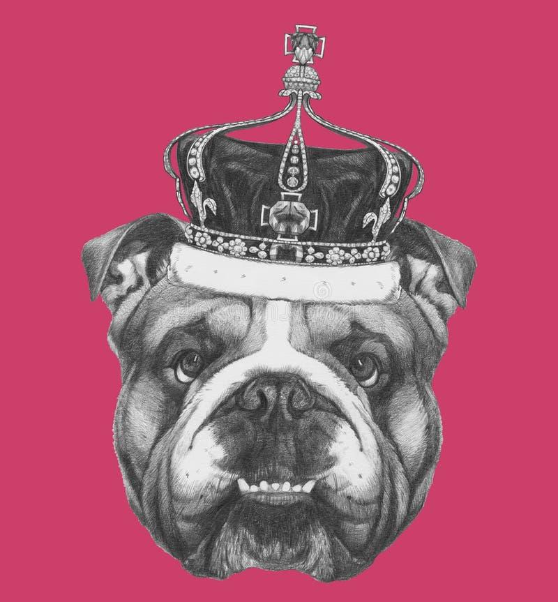 Dibujo original del dogo inglés con la corona ilustración del vector