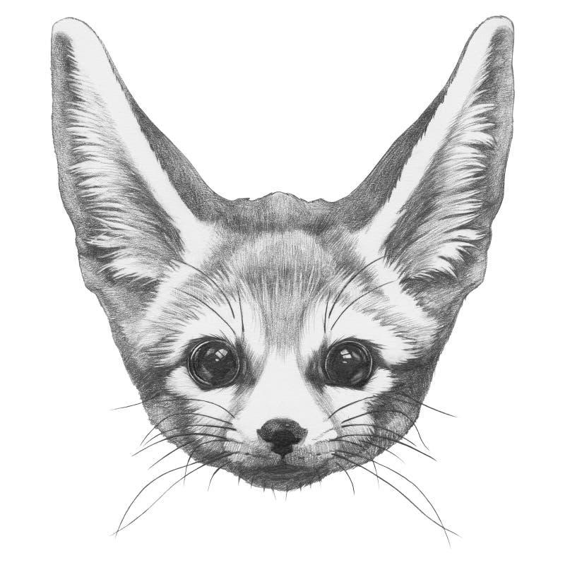 Dibujo original del Fox de Fennec ilustración del vector