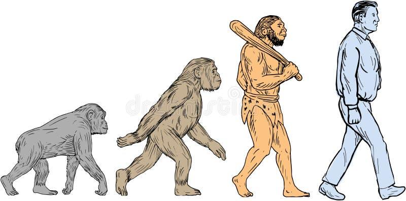 Dibujo que camina de la evolución humana stock de ilustración