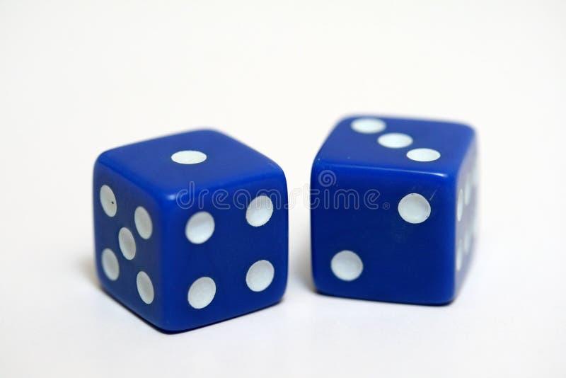 The dice stock photo
