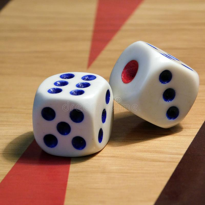 Dice on the board for backgammon. stock image
