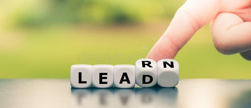 Dice formulerar orden 'lära' och 'lead' arkivfoton