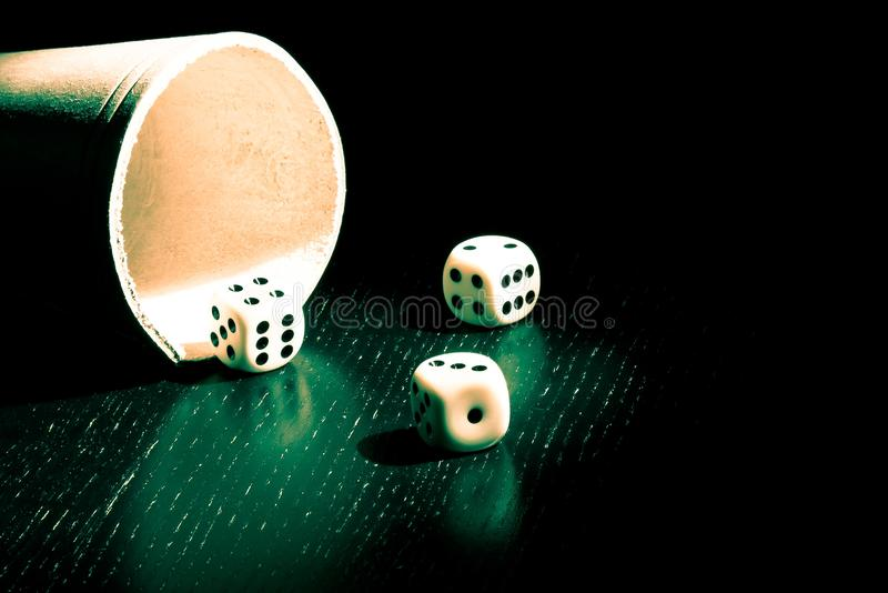 Dice Near The Container Stock Images