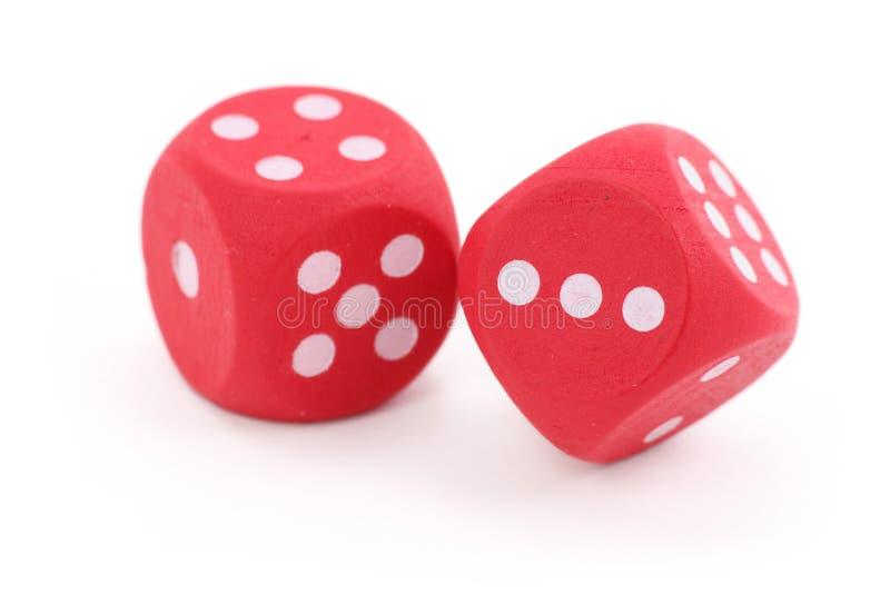 dices красный цвет стоковая фотография