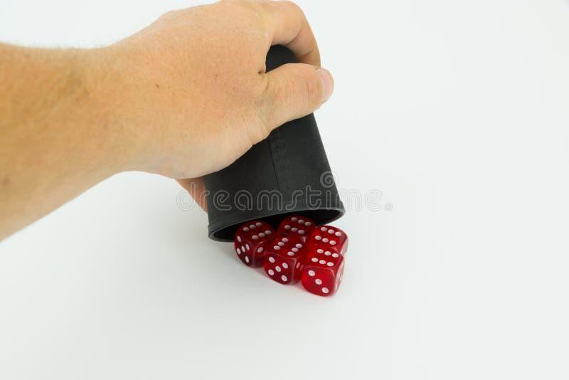 5 dices с рукой стоковые изображения