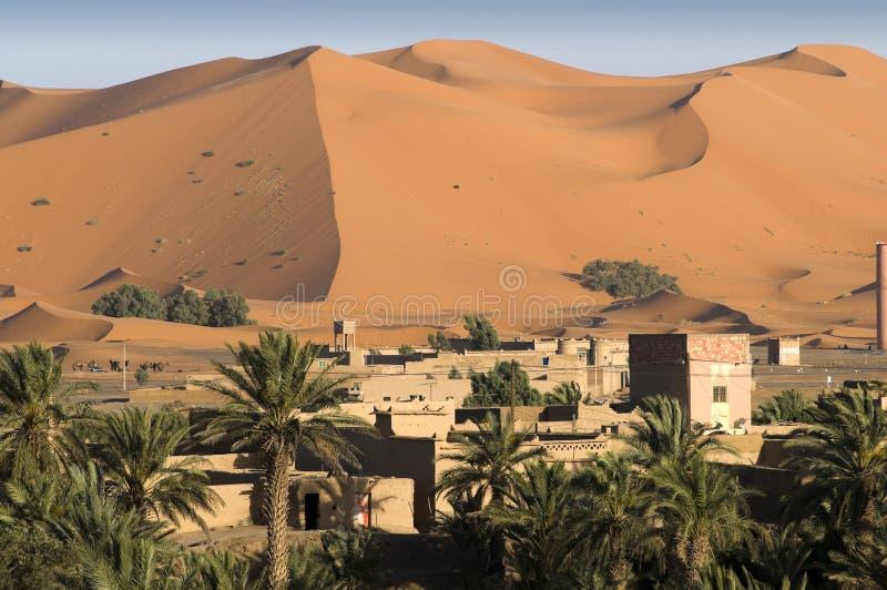 Dicht bij de woestijn. stock foto's