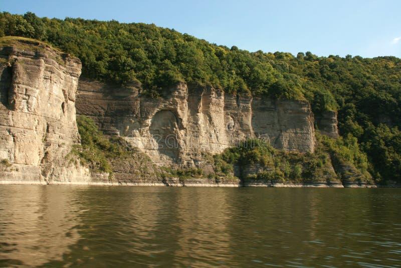 Dicht bos op een klip boven de rivier royalty-vrije stock fotografie