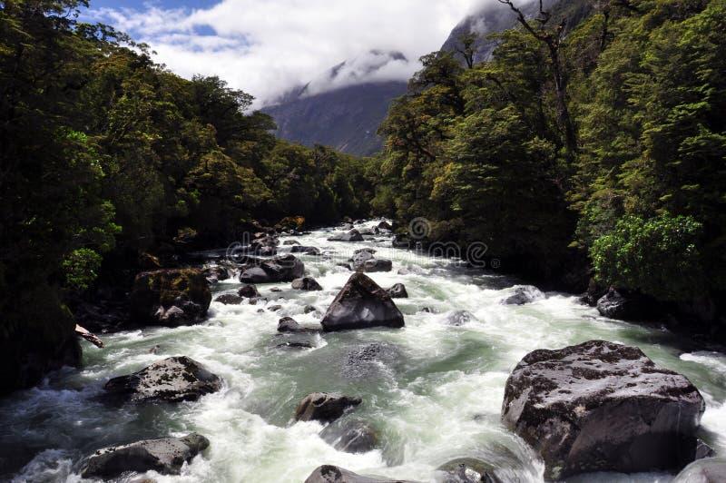 Dichtbij de fjord stock afbeelding