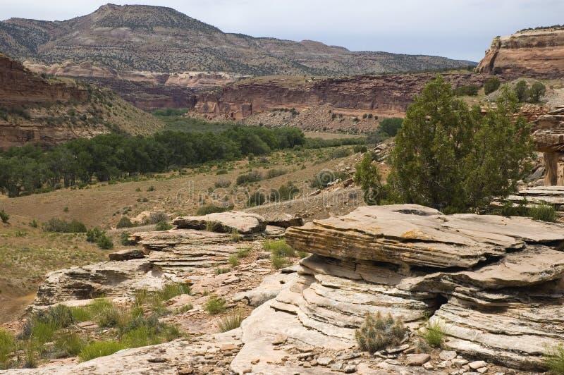 Dichtbij Fruita, Colorado royalty-vrije stock foto's