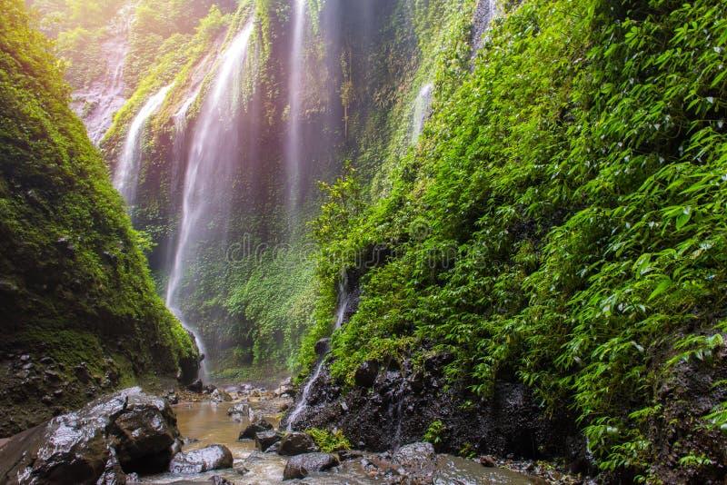 Dichtbijgelegen Madakaripura de Waterval zet Bromo in oostelijk Java, Indones op royalty-vrije stock afbeeldingen