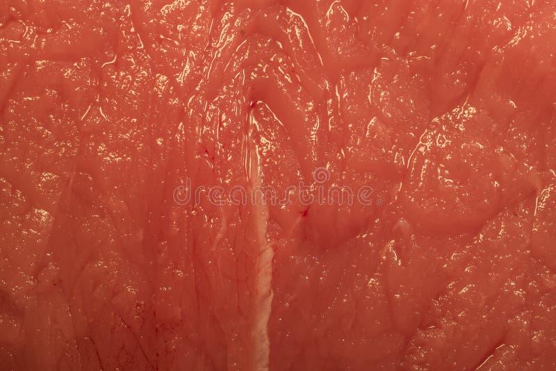 Dichte mening van een vleeslapje vlees royalty-vrije stock afbeeldingen