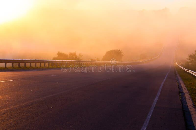 Dichter Nebel des frühen Morgens im Wold an der Sommerlandstraße nahe Fluss mit Geländern stockbilder