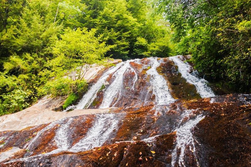 Dicks Nebenfluss-Wasserfall stockbild