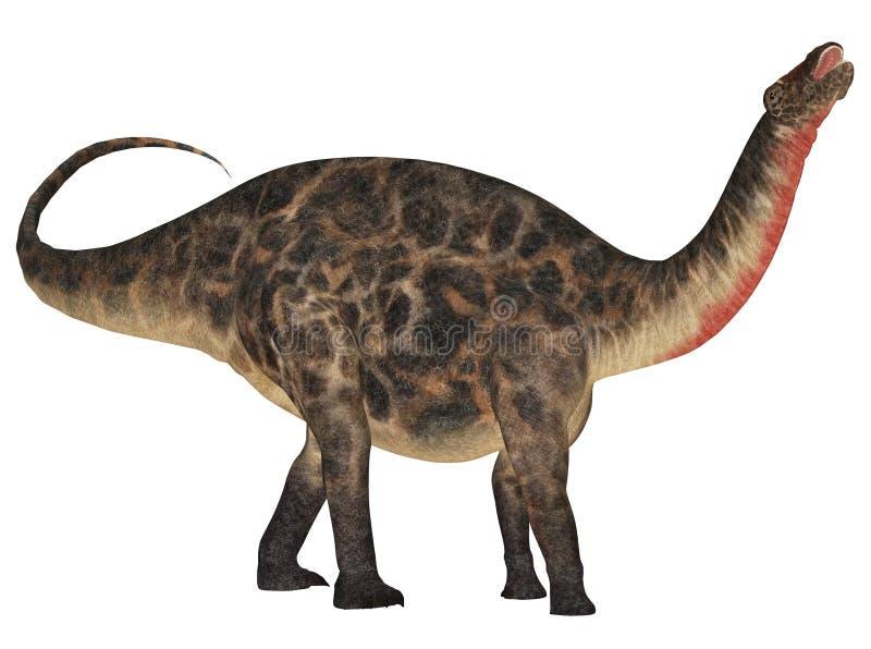 dicraeosaurus stock illustrationer
