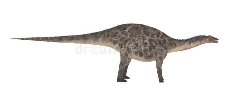 Dicraeosaurus Dinosaurieisolat på vit royaltyfri illustrationer