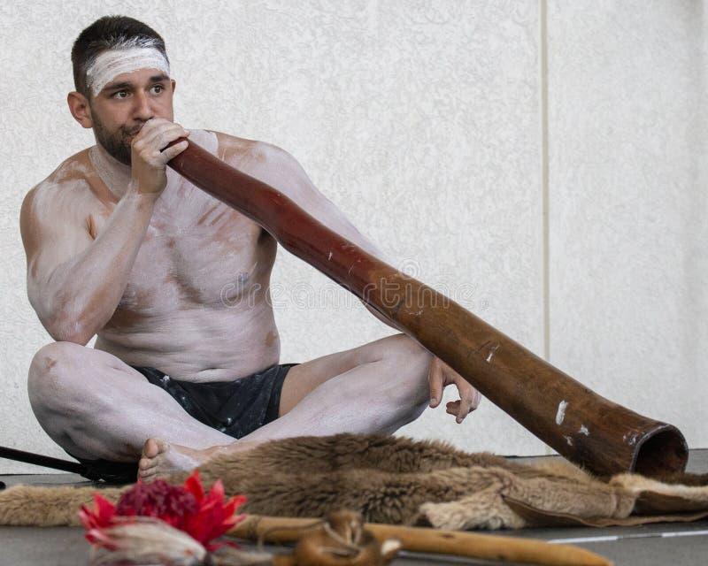 didgeridoo stock fotografie