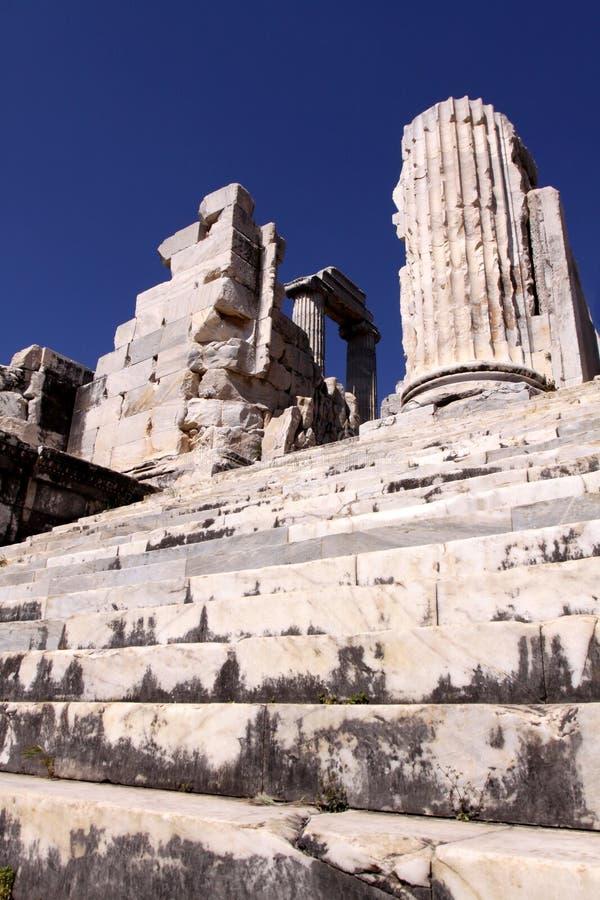Didim ruins. Ruins and columns in Apollo temple in Didim, Turkey stock photo