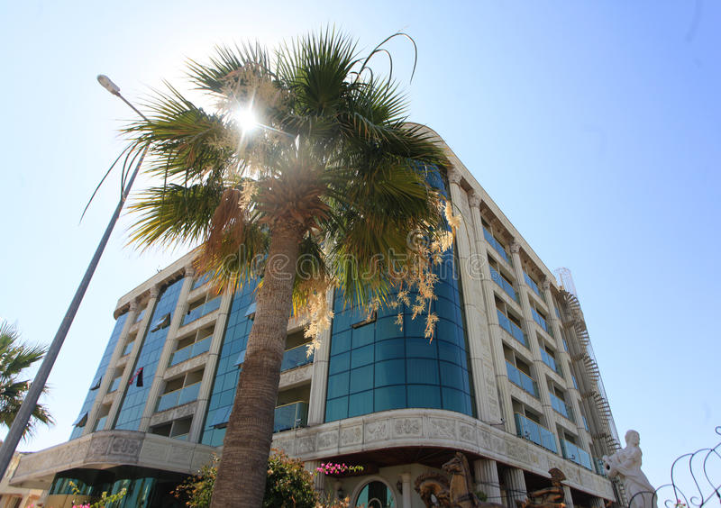 DIDIM, TURKEY - JULY 9, 2014. Outside view of the hotel next to a palm tree royalty free stock images