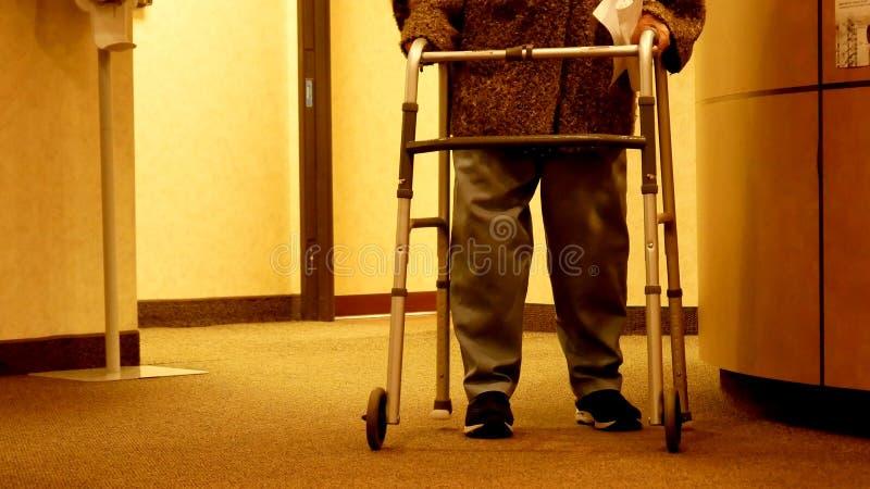 Die ältere Frau, die einen Wanderer verwendet, geht in Richtung zur Kamera lizenzfreies stockbild
