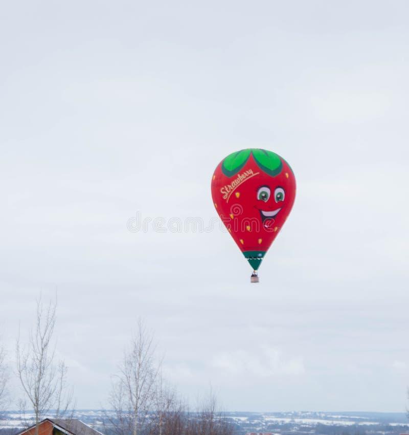 Die Äpfel im Schnee lizenzfreie stockfotografie