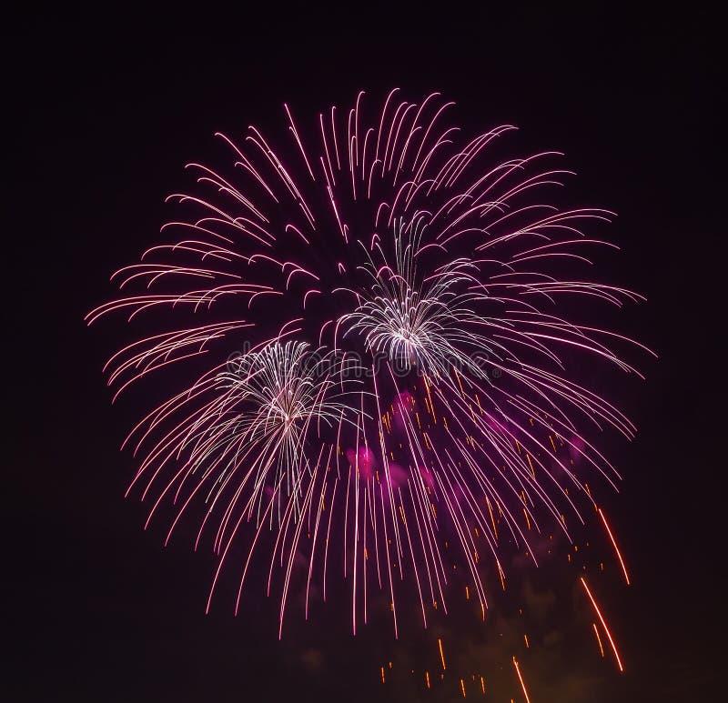 Die Abendfeuerwerke im Himmel zu Ehren der Feier von Victory Day lizenzfreies stockbild