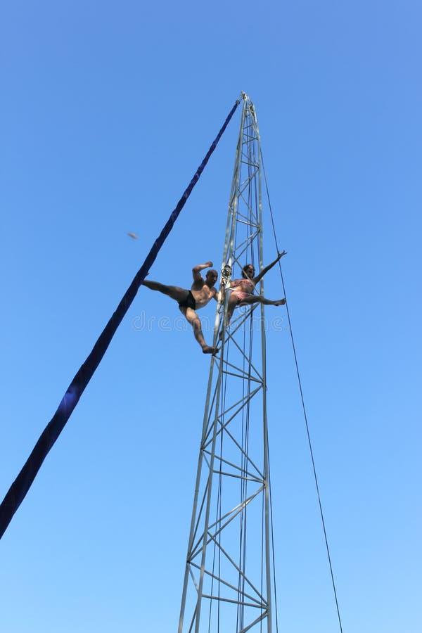 Die akrobatischen Pirouetten auf der Höhe des Vogel ` s Fluges stockfoto