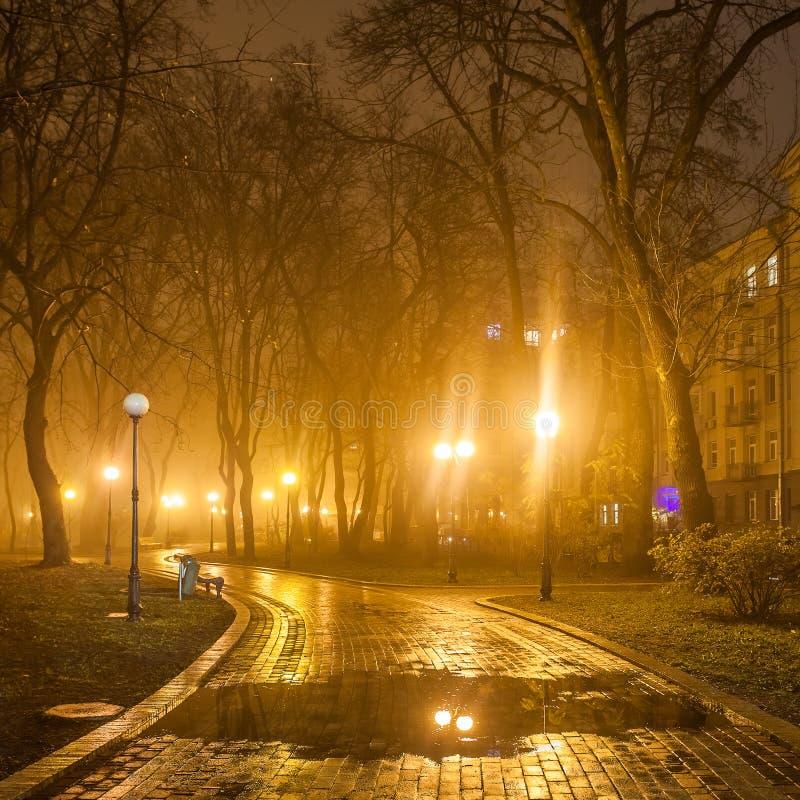 Die Allee des Herbststadtparks lizenzfreies stockbild