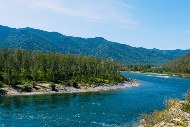 Die Altai-Landschaft mit Gebirgsfluss und grünen Hügeln, Sibirien, Altai-Republik, Russland stockfotos