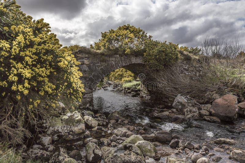 Die alte Brücke stockfotos