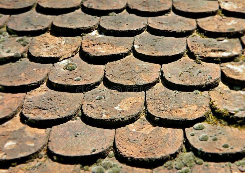 Die alten Dachplatten, Detail lizenzfreies stockbild