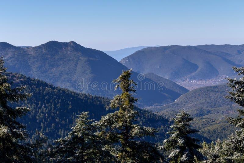 Download Die Ansicht Der Berge Im Abstand Und In Der Eis-bedeckten Fichte Stockbild - Bild von vereisung, berge: 106803661