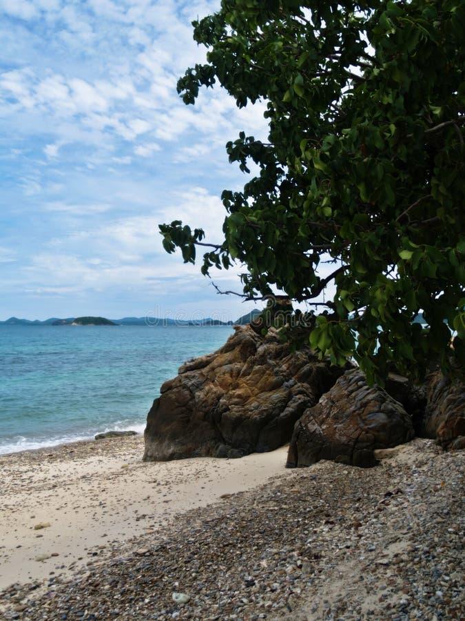 Die Ansicht des Meeres mit grünen Blättern, Sandkies und große Felsen und Himmel stockbilder