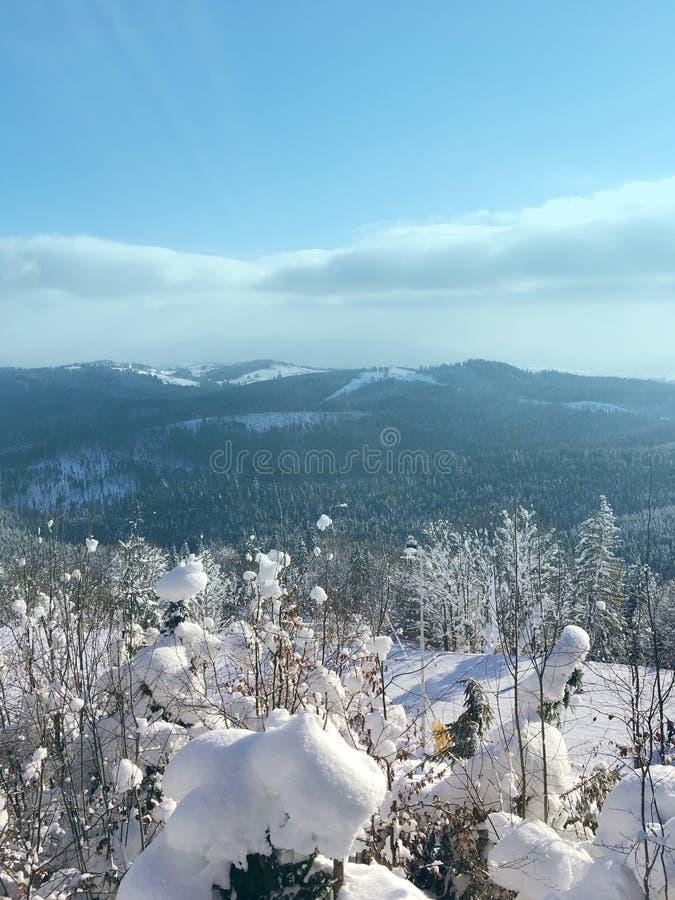 Die Ansicht vom Berg lizenzfreies stockbild