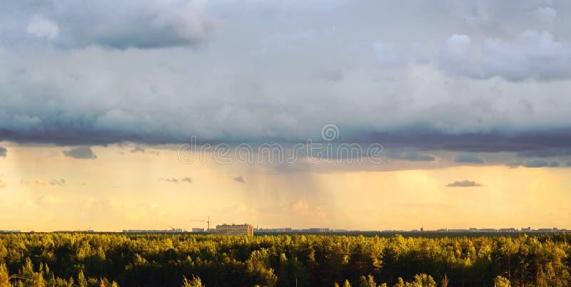 Die Ansicht von den Höhen des Waldes und vom komplexen Wohnnovaya Okhta, das Dorf von Murino mit Regenwolken St. stockbild