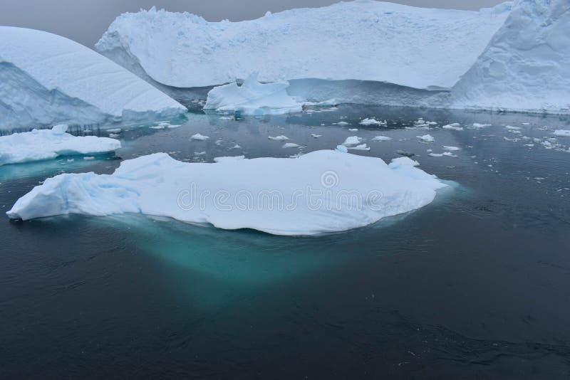 Die Antarktis, Eisberge, die auf das Südpolarmeer schwimmen stockfotografie