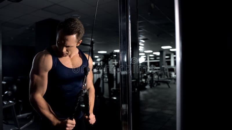 Die athletischen Manntrainings-Armmuskeln, Trizeps durchführend verkabeln Pushdownübung lizenzfreie stockfotos