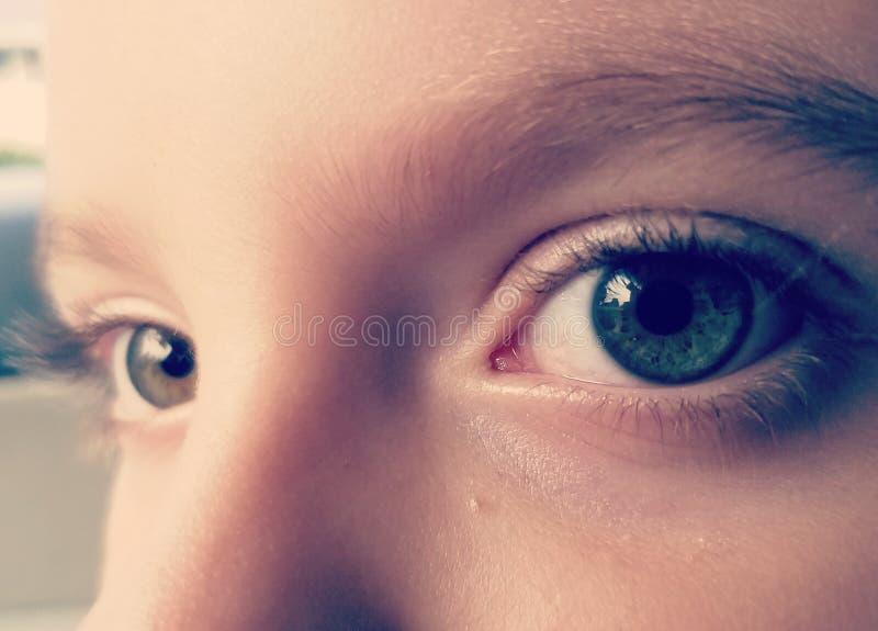 Die Augen lizenzfreie stockfotos