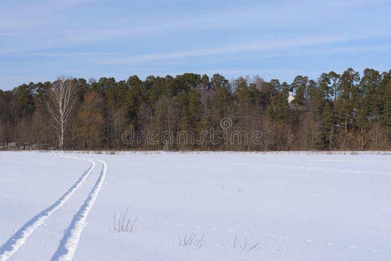 Die Bahn auf einem schneebedeckten Feld, das fern verlässt stockfotos