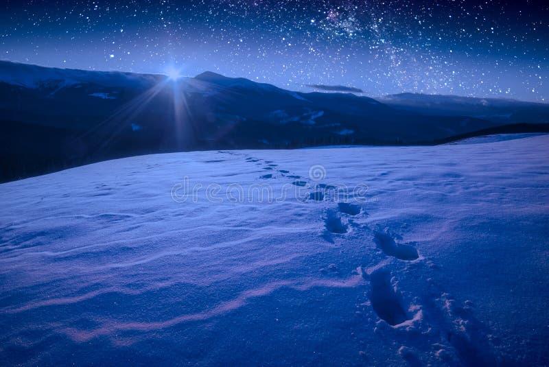 Die Bahn von Abdrücken auf einem Schnee in einem Karpatenberg Valle lizenzfreie stockfotos