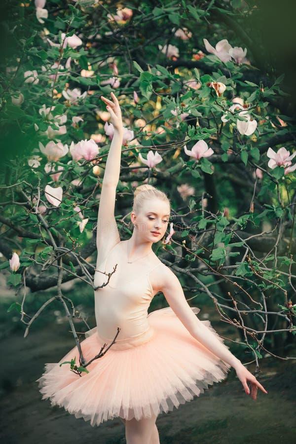 Die Ballerina, die draußen klassisches Ballett tanzt, wirft in den Blumenländern auf lizenzfreies stockbild