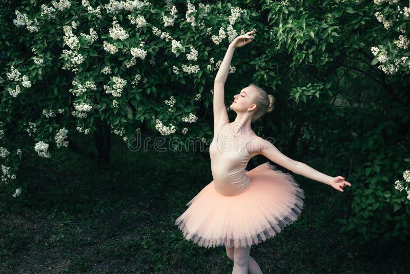 Die Ballerina, die draußen klassisches Ballett tanzt, wirft in den Blumenländern auf lizenzfreie stockfotos