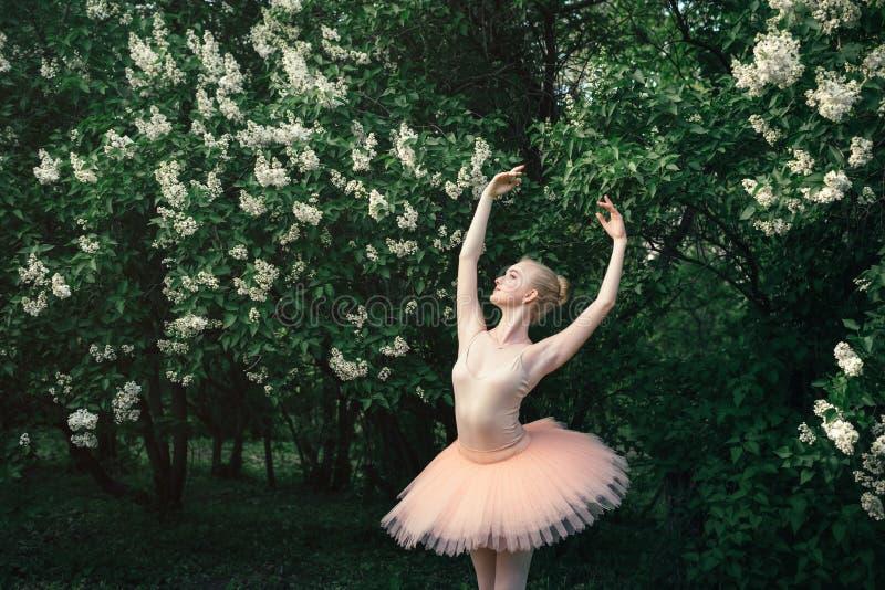 Die Ballerina, die draußen klassisches Ballett tanzt, wirft in den Blumenländern auf stockfotos