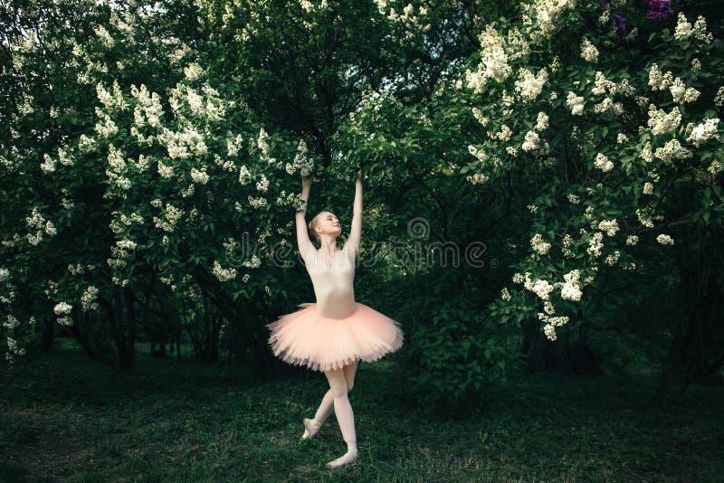 Die Ballerina, die draußen klassisches Ballett tanzt, wirft in den Blumenländern auf stockfotografie