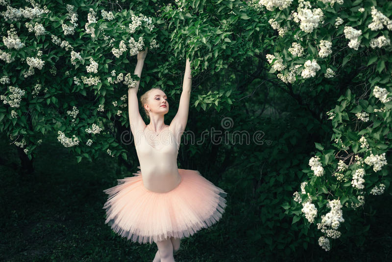 Die Ballerina, die draußen klassisches Ballett tanzt, wirft in den Blumenländern auf stockfoto