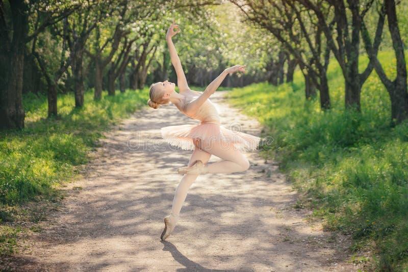 Die Ballerina, die draußen klassisches Ballett tanzt, wirft im grünen landsca auf lizenzfreies stockfoto