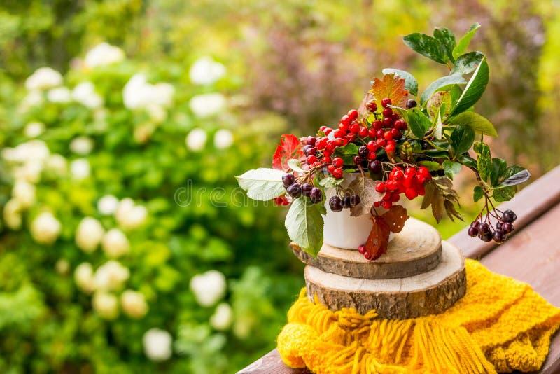 Die Beeren von Viburnum und von Chokeberry in einem Vase lokalisiert auf Naturhintergrund auf gelbem Schal Ebereschenbeeren, schw stockfoto