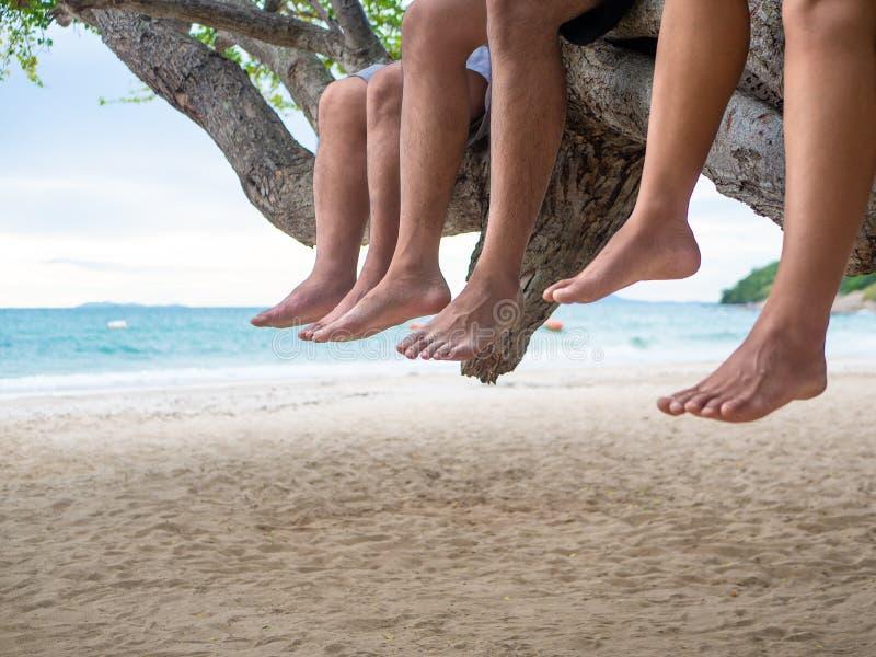 Die Beine, die am Baumast neben dem Meer hängen, setzen Hintergrund auf den Strand lizenzfreies stockbild