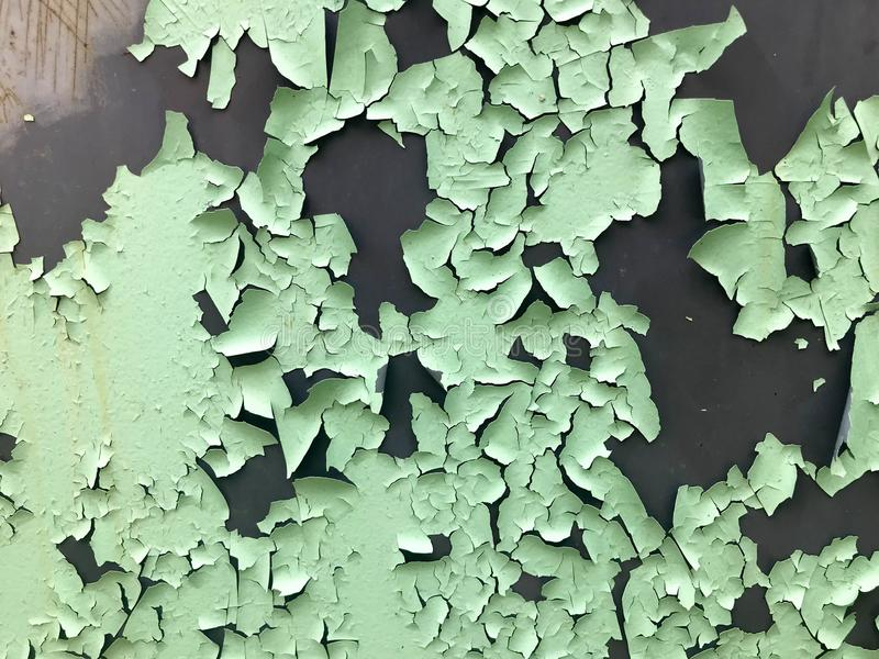 Die Beschaffenheit der hellgrünen Schalenfarbe des alten schäbigen Türkises mit Sprüngen und Kratzern auf der rostigen Metallwand stockfoto