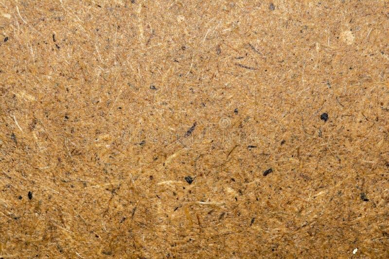 Die Beschaffenheit der nassen Holzfaserplatte, abstrakter Hintergrund der Nahaufnahme lizenzfreie stockfotografie