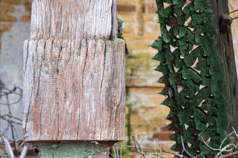 Die Beschaffenheit des alten gebrochenen Holzes, gemalt im Grün auf einem Hintergrund einer alten Backsteinmauer lizenzfreie stockfotografie